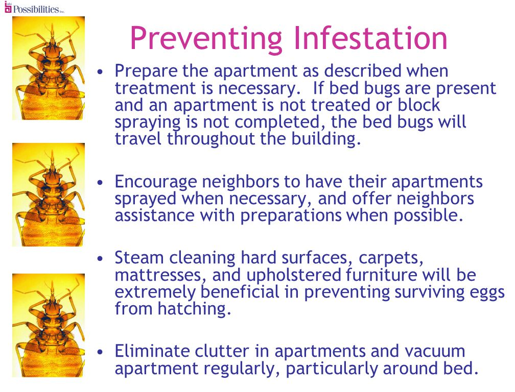 Preventing Infestation Prepare the apartment as described when treatment is necessary.