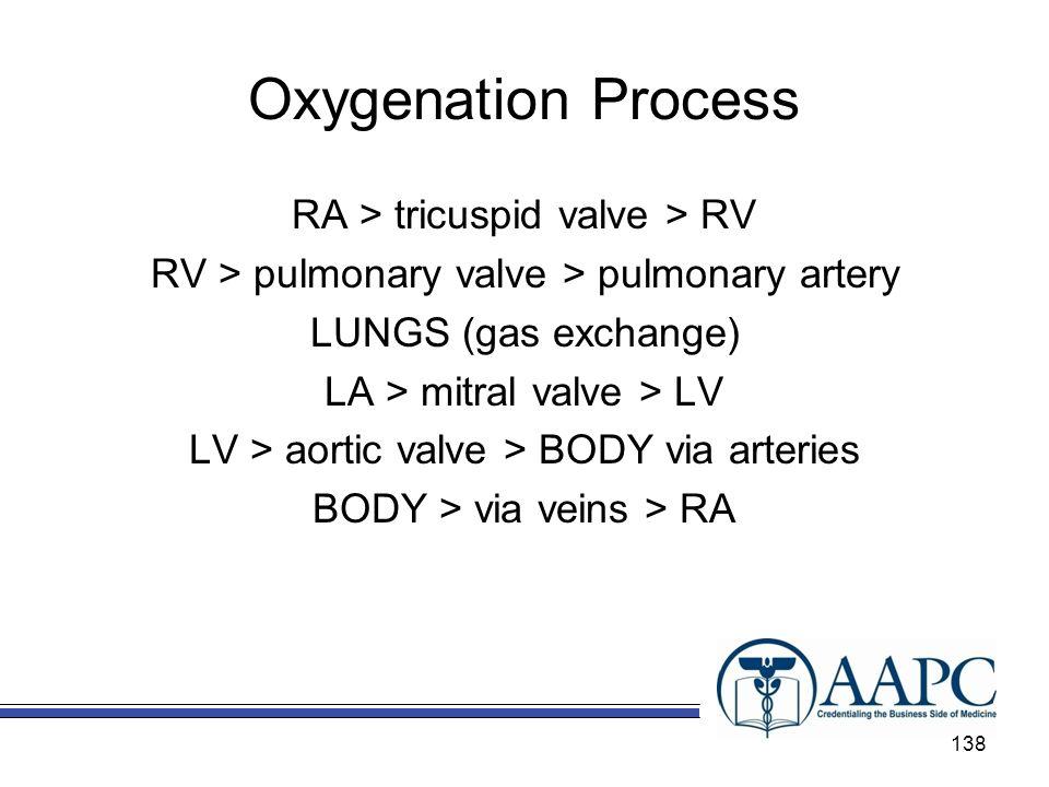 Oxygenation Process RA > tricuspid valve > RV RV > pulmonary valve > pulmonary artery LUNGS (gas exchange) LA > mitral valve > LV LV > aortic valve >