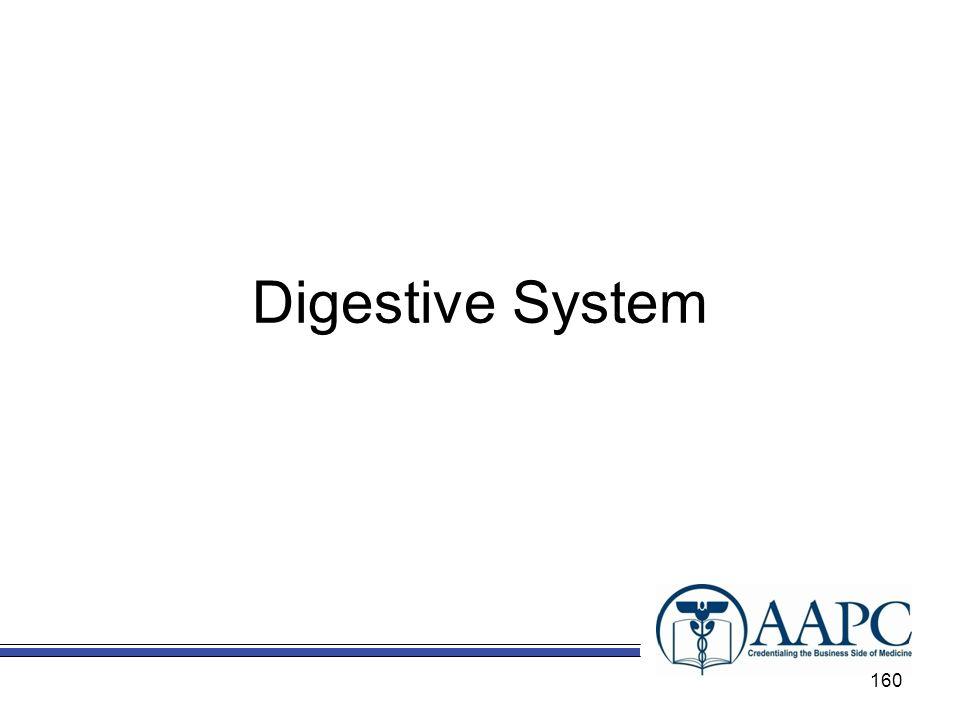 Digestive System 160
