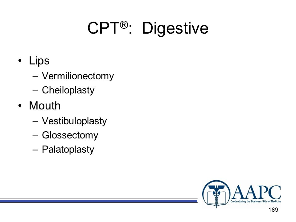 CPT ® : Digestive Lips –Vermilionectomy –Cheiloplasty Mouth –Vestibuloplasty –Glossectomy –Palatoplasty 169