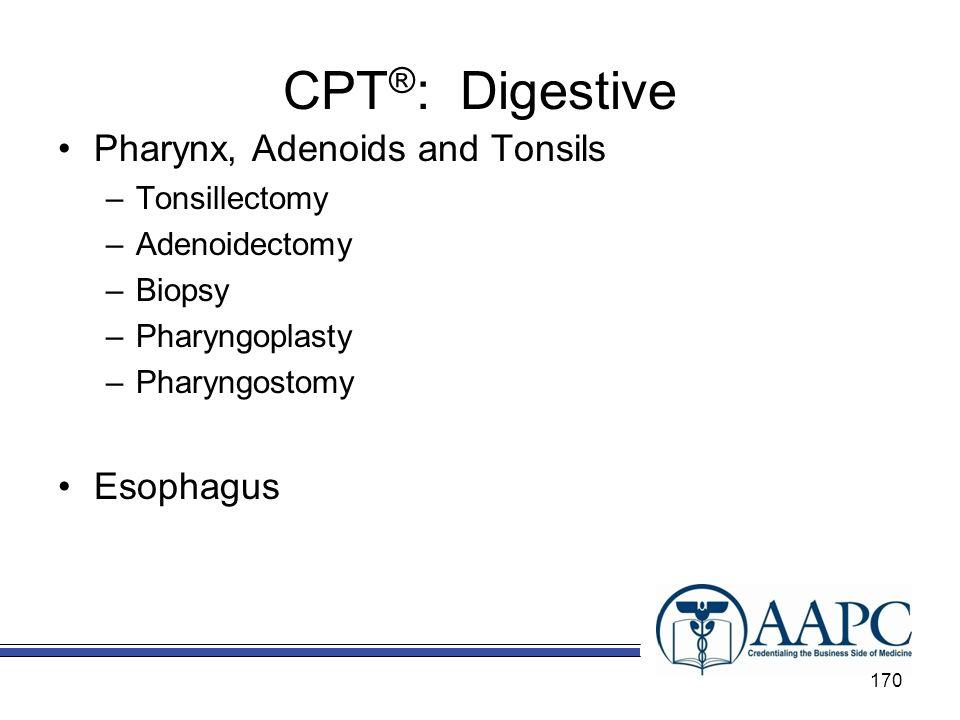 CPT ® : Digestive Pharynx, Adenoids and Tonsils –Tonsillectomy –Adenoidectomy –Biopsy –Pharyngoplasty –Pharyngostomy Esophagus 170