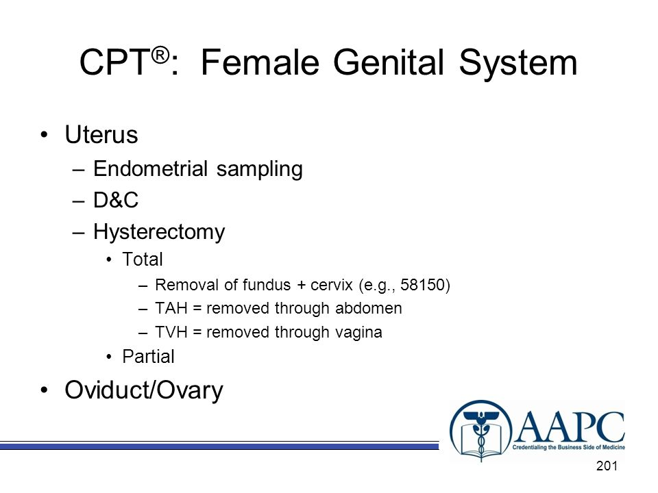 CPT ® : Female Genital System Uterus –Endometrial sampling –D&C –Hysterectomy Total –Removal of fundus + cervix (e.g., 58150) –TAH = removed through abdomen –TVH = removed through vagina Partial Oviduct/Ovary 201
