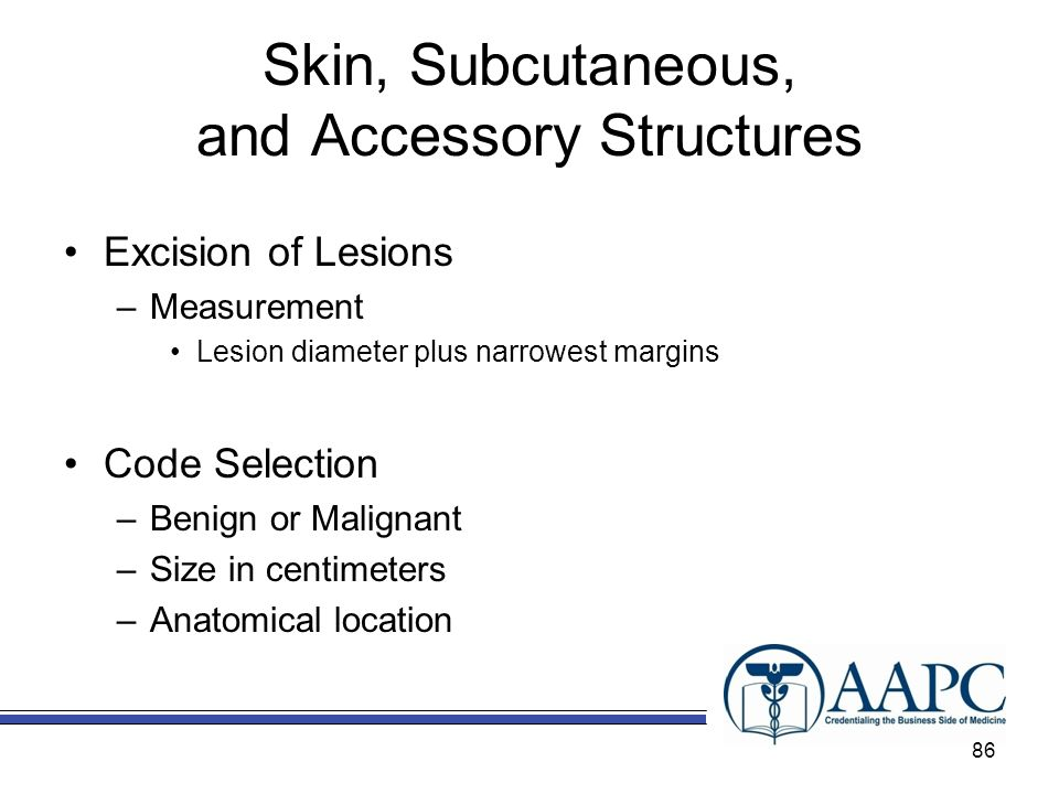 Skin, Subcutaneous, and Accessory Structures Excision of Lesions –Measurement Lesion diameter plus narrowest margins Code Selection –Benign or Malignant –Size in centimeters –Anatomical location 86