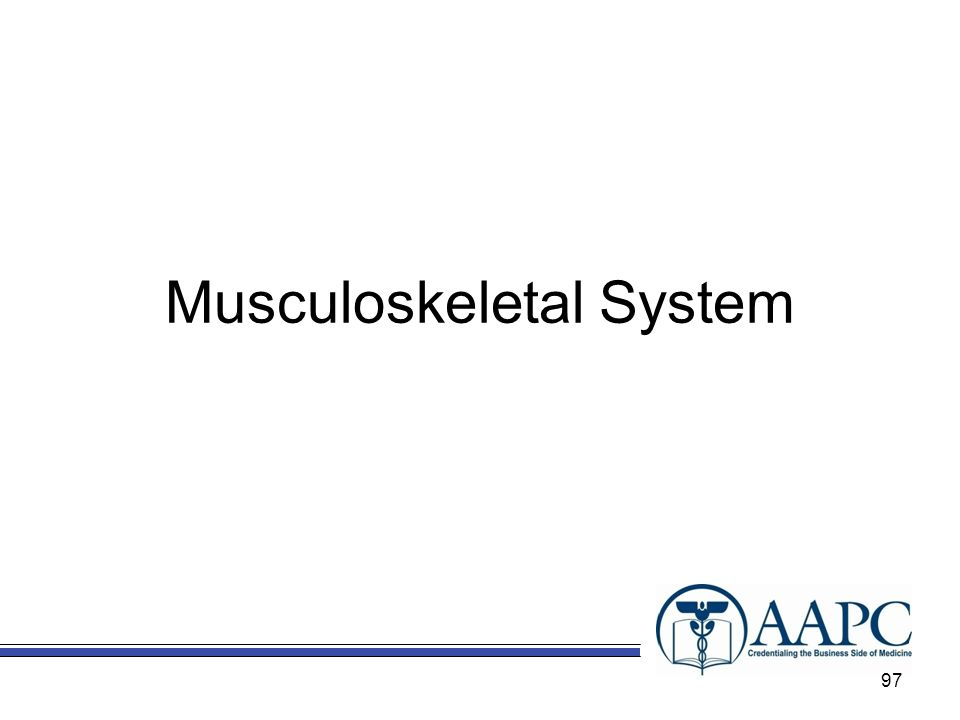 Musculoskeletal System 97