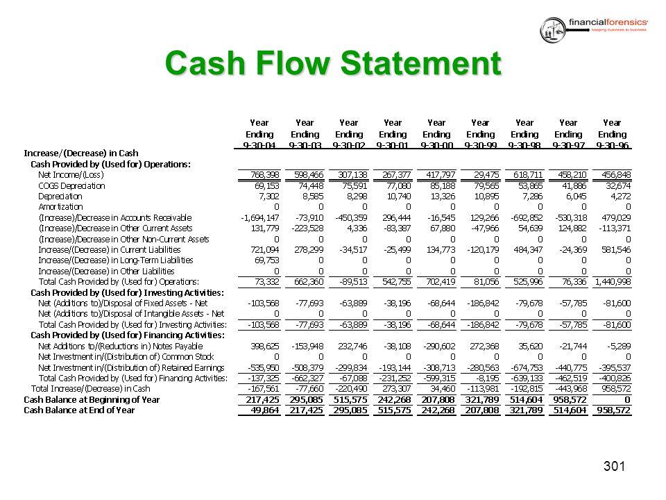 Cash Flow Statement 301