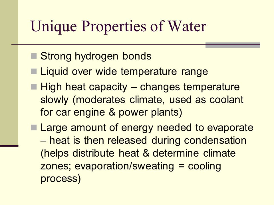 Unique Properties of Water Strong hydrogen bonds Liquid over wide temperature range High heat capacity – changes temperature slowly (moderates climate