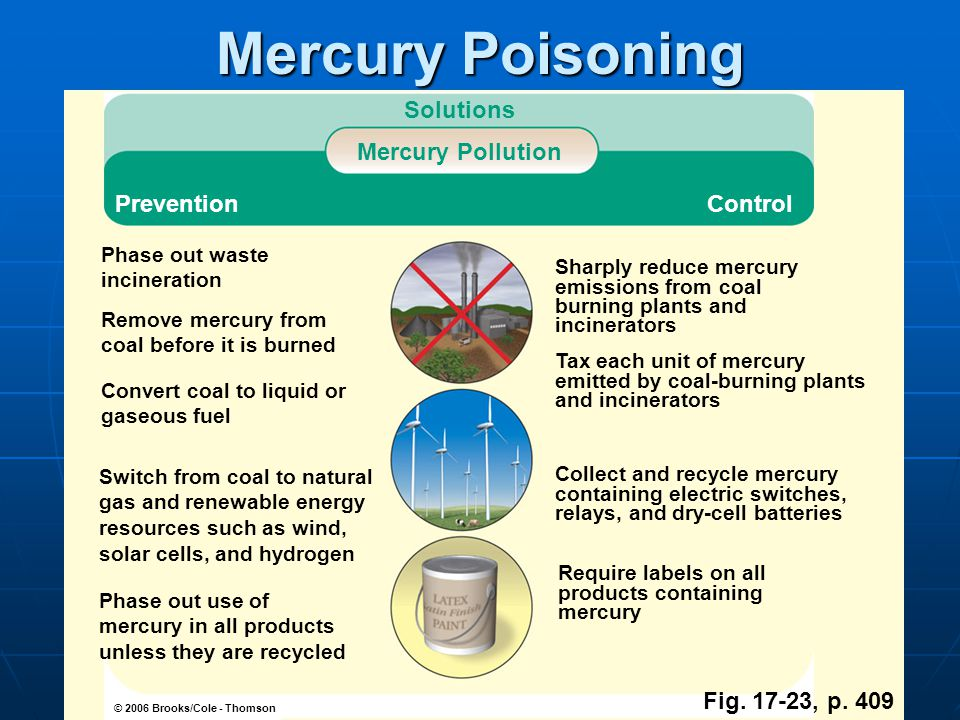 © 2006 Brooks/Cole - Thomson Solutions Mercury Pollution PreventionControl Sharply reduce mercury emissions from coal burning plants and incinerators