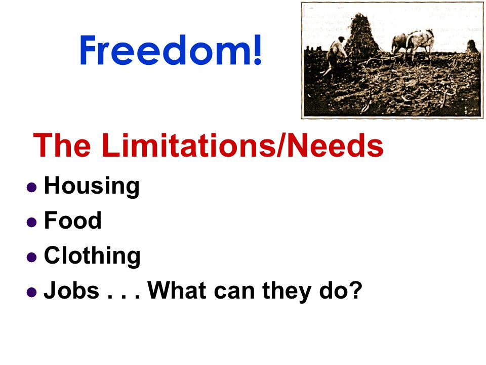 Freedom! The Limitations/Needs Housing Food Clothing Jobs... What can they do?
