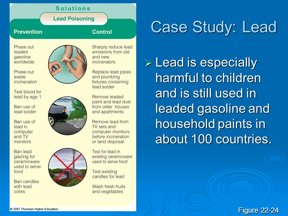Case Study: Lead Lead is especially harmful to children and is still used in leaded gasoline and household paints in about 100 countries. Lead is espe