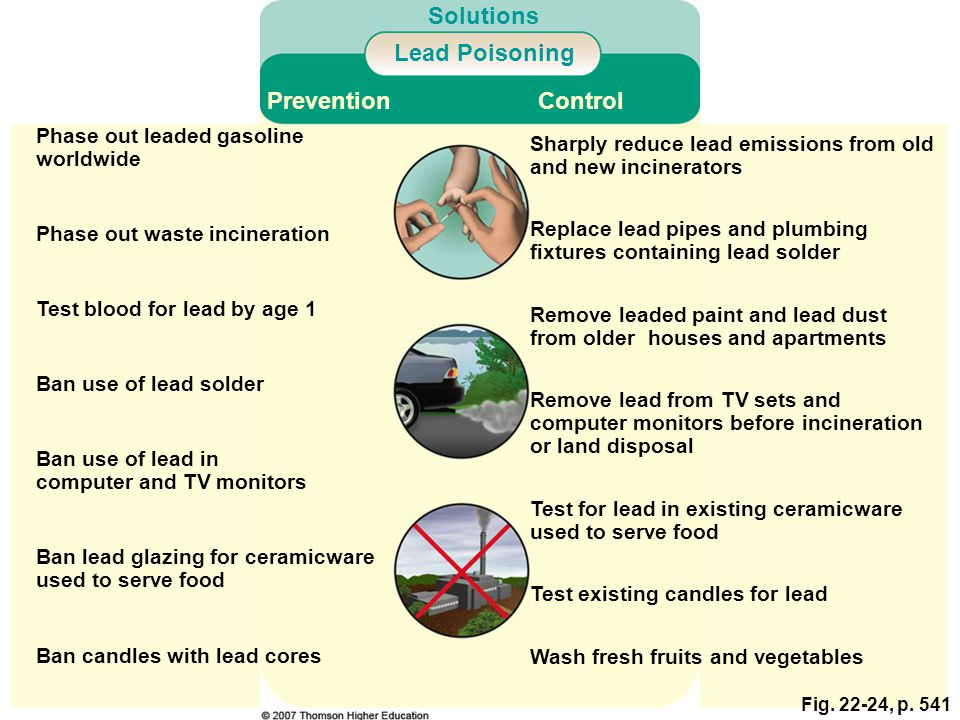 Fig. 22-24, p. 541 Phase out leaded gasoline worldwide Solutions Prevention Lead Poisoning Control Wash fresh fruits and vegetables Test existing cand