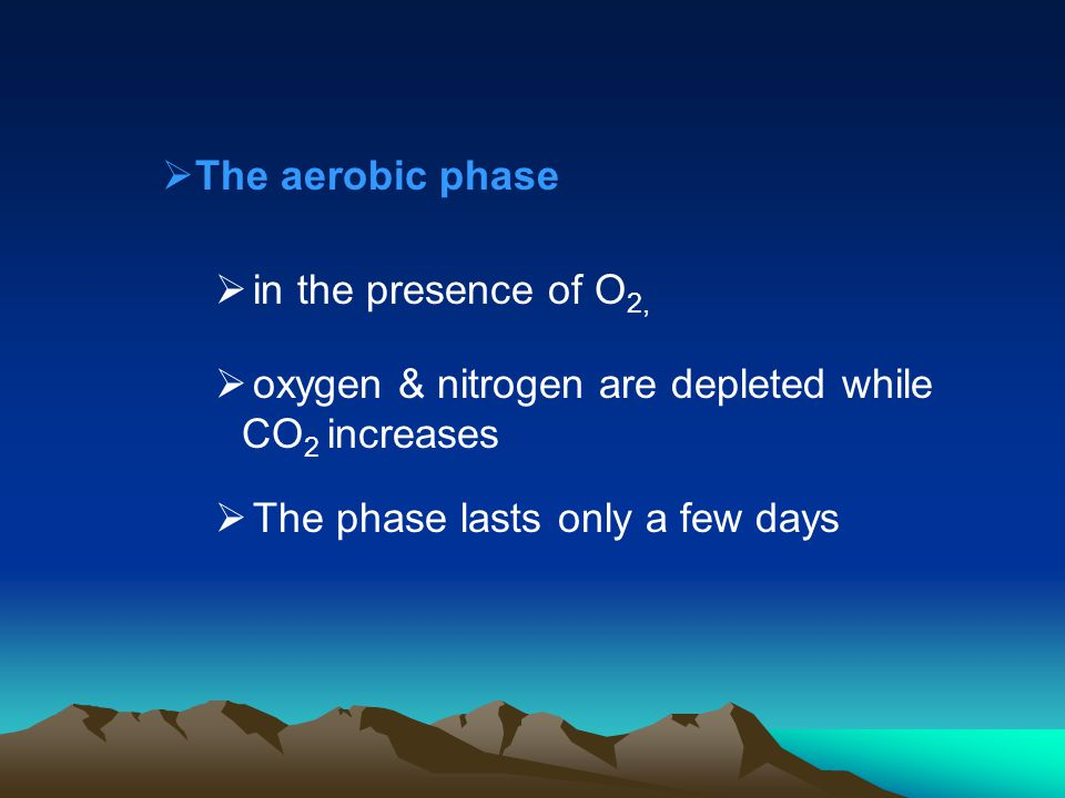 The aerobic phase in the presence of O 2, oxygen & nitrogen are depleted while CO 2 increases The phase lasts only a few days