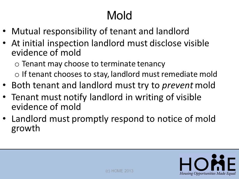 Mold (c) HOME 2013 Mutual responsibility of tenant and landlord At initial inspection landlord must disclose visible evidence of mold o Tenant may choose to terminate tenancy o If tenant chooses to stay, landlord must remediate mold Both tenant and landlord must try to prevent mold Tenant must notify landlord in writing of visible evidence of mold Landlord must promptly respond to notice of mold growth