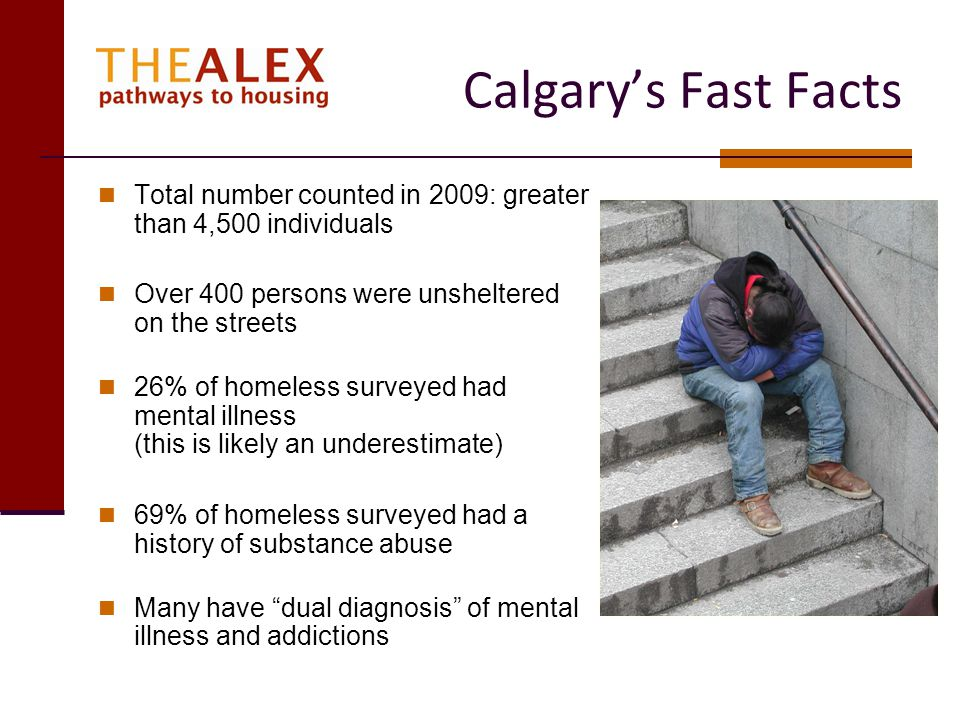 Calgarys Fast Facts Total number counted in 2009: greater than 4,500 individuals Over 400 persons were unsheltered on the streets 26% of homeless surv
