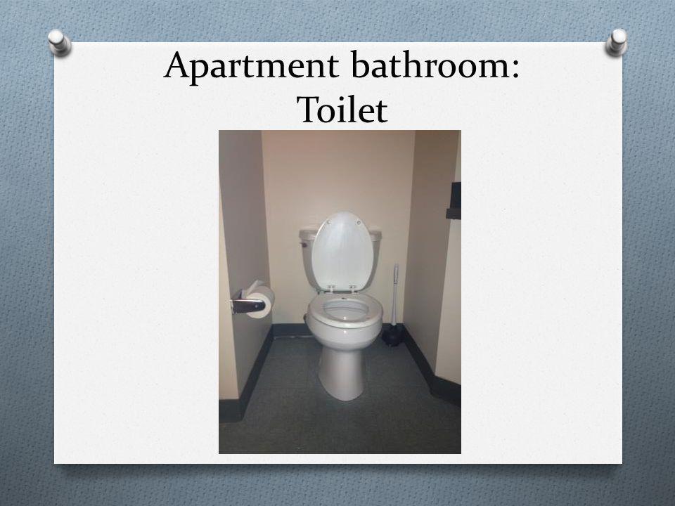Apartment bathroom: Toilet