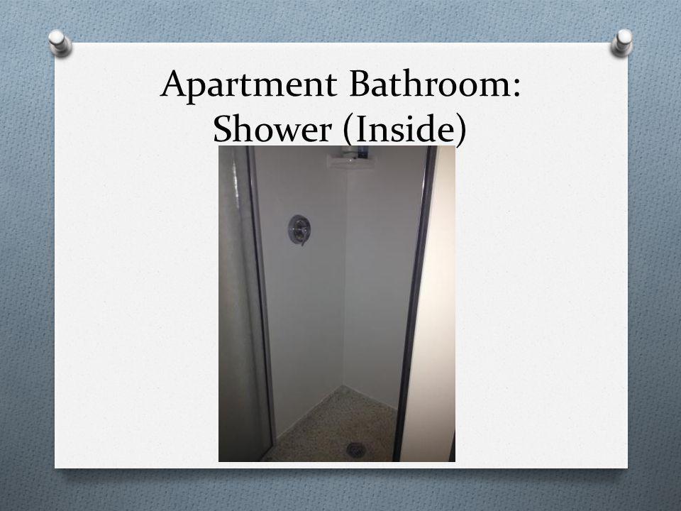 Apartment Bathroom: Shower (Inside)