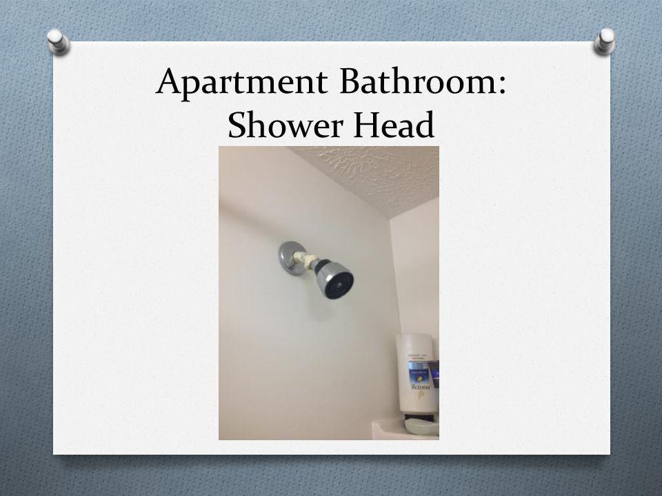 Apartment Bathroom: Shower Head