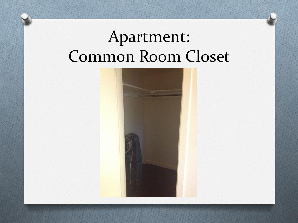 Apartment: Common Room Closet