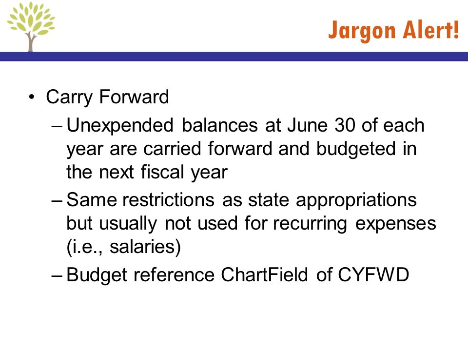 Jargon Alert! Carry Forward –Unexpended balances at June 30 of each year are carried forward and budgeted in the next fiscal year –Same restrictions a