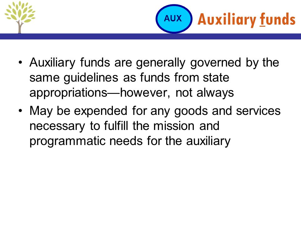 Auxiliary funds Auxiliary funds are generally governed by the same guidelines as funds from state appropriationshowever, not always May be expended fo