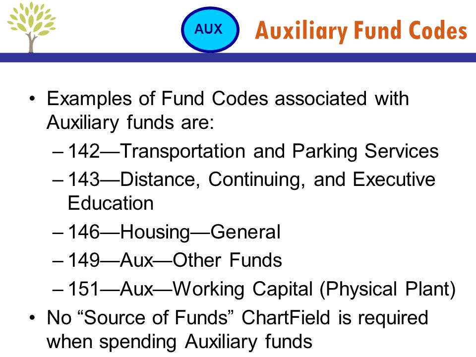 Auxiliary Fund Codes Examples of Fund Codes associated with Auxiliary funds are: –142Transportation and Parking Services –143Distance, Continuing, and