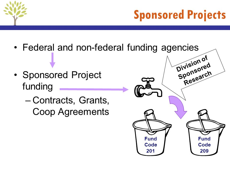 Federal and non-federal funding agencies Sponsored Project funding –Contracts, Grants, Coop Agreements Sponsored Projects Fund Code 201 Fund Code 209