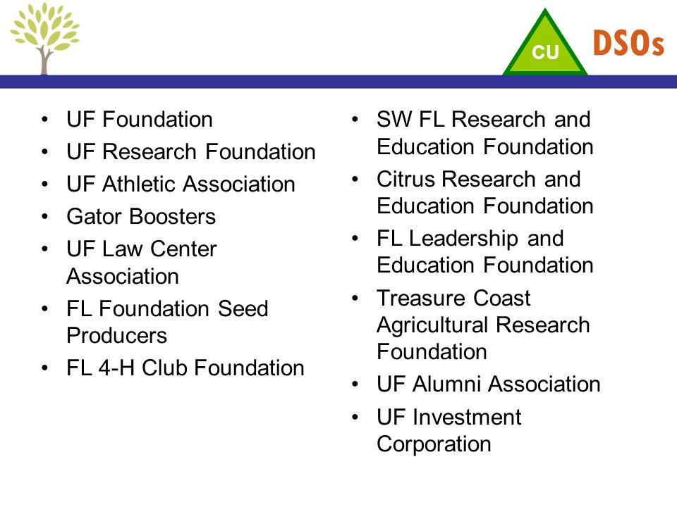 DSOs UF Foundation UF Research Foundation UF Athletic Association Gator Boosters UF Law Center Association FL Foundation Seed Producers FL 4-H Club Fo