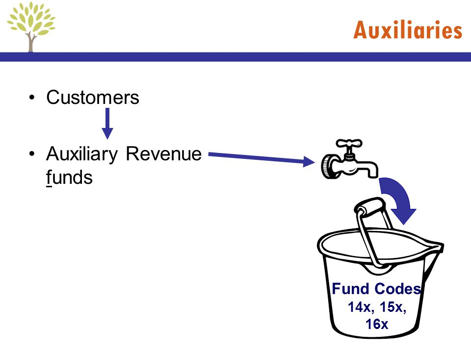 Customers Auxiliary Revenue funds Fund Codes 14x, 15x, 16x Auxiliaries