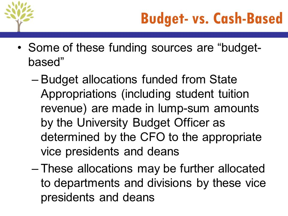 Budget- vs. Cash-Based Some of these funding sources are budget- based –Budget allocations funded from State Appropriations (including student tuition