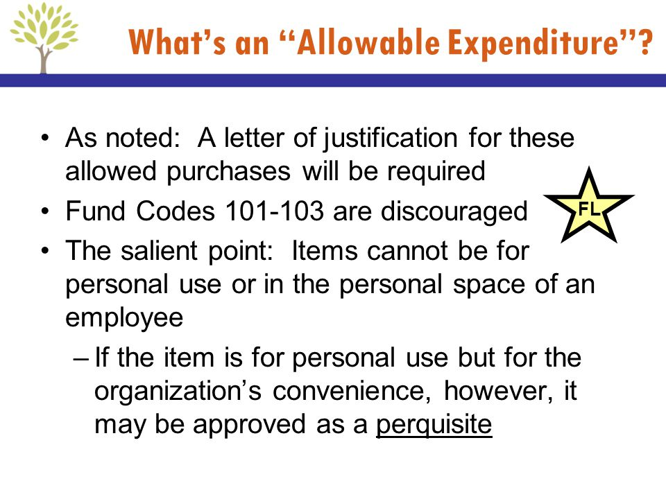 Whats an Allowable Expenditure? As noted: A letter of justification for these allowed purchases will be required Fund Codes 101-103 are discouraged Th