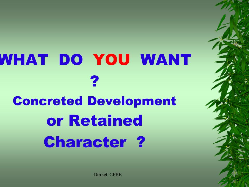 Dorset CPRE WHAT DO YOU WANT Concreted Development or Retained Character