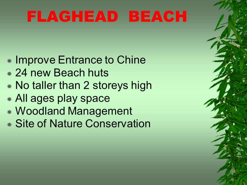 FLAGHEAD BEACH Improve Entrance to Chine 24 new Beach huts No taller than 2 storeys high All ages play space Woodland Management Site of Nature Conservation