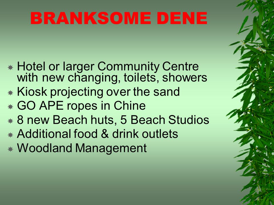 BRANKSOME DENE Hotel or larger Community Centre with new changing, toilets, showers Kiosk projecting over the sand GO APE ropes in Chine 8 new Beach huts, 5 Beach Studios Additional food & drink outlets Woodland Management