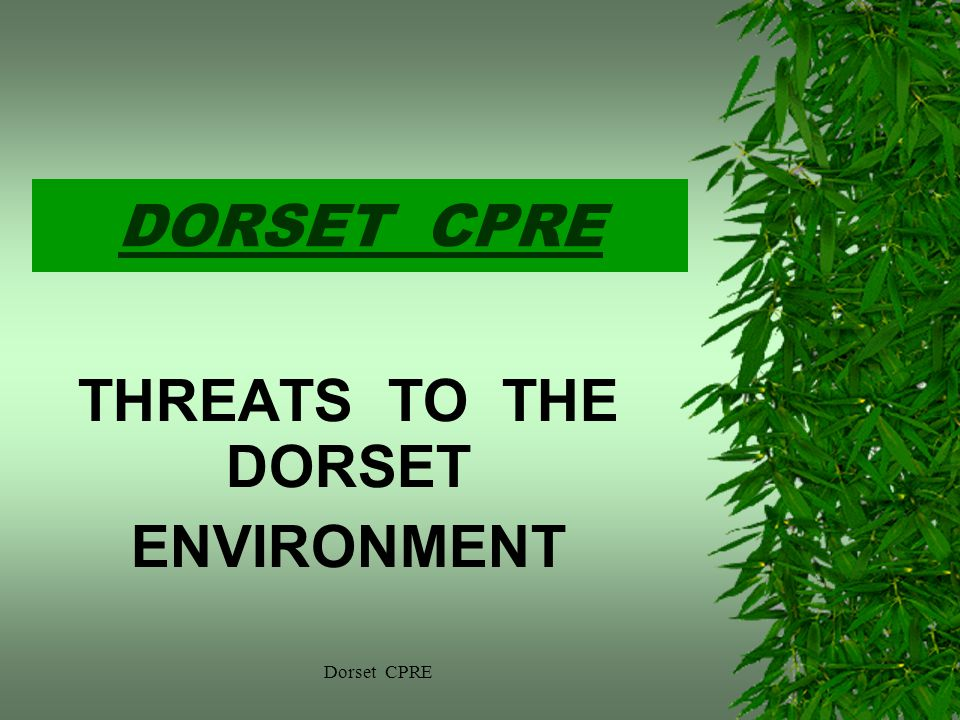 DORSET CPRE THREATS TO THE DORSET ENVIRONMENT