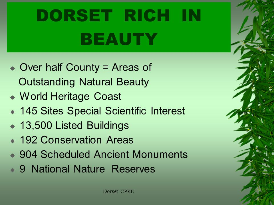 DORSET RICH IN BEAUTY Over half County = Areas of Outstanding Natural Beauty World Heritage Coast 145 Sites Special Scientific Interest 13,500 Listed Buildings 192 Conservation Areas 904 Scheduled Ancient Monuments 9 National Nature Reserves