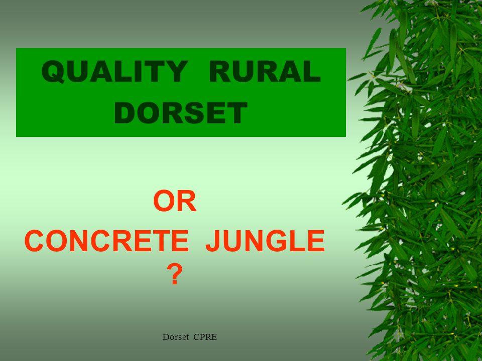Dorset CPRE QUALITY RURAL DORSET OR CONCRETE JUNGLE ?