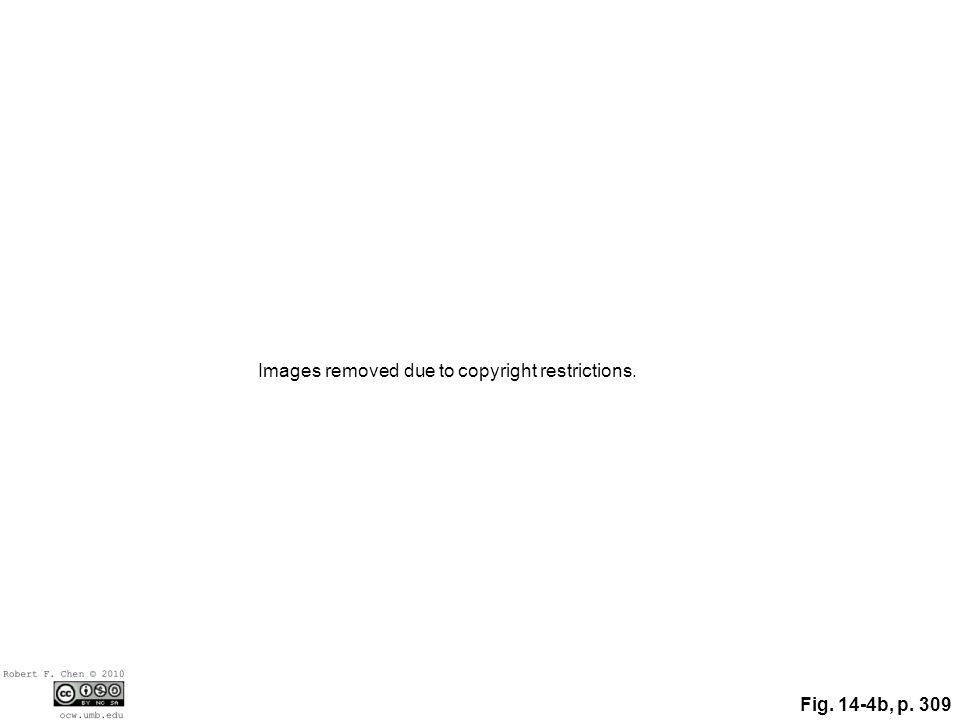 Fig. 14-4b, p. 309 Images removed due to copyright restrictions.