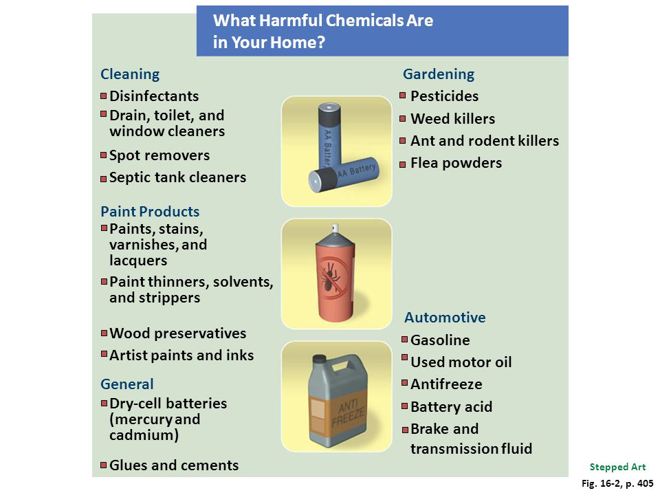 What Harmful Chemicals Are in Your Home? Cleaning Disinfectants Drain, toilet, and window cleaners Spot removers Septic tank cleaners Paint Products P