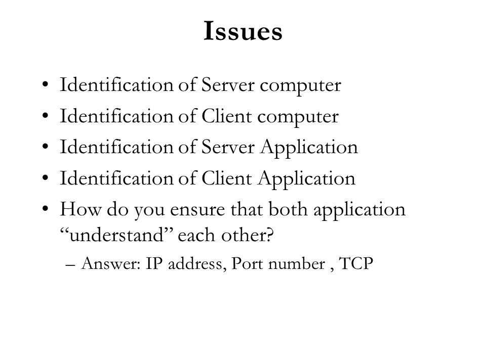 Issues Identification of Server computer Identification of Client computer Identification of Server Application Identification of Client Application H