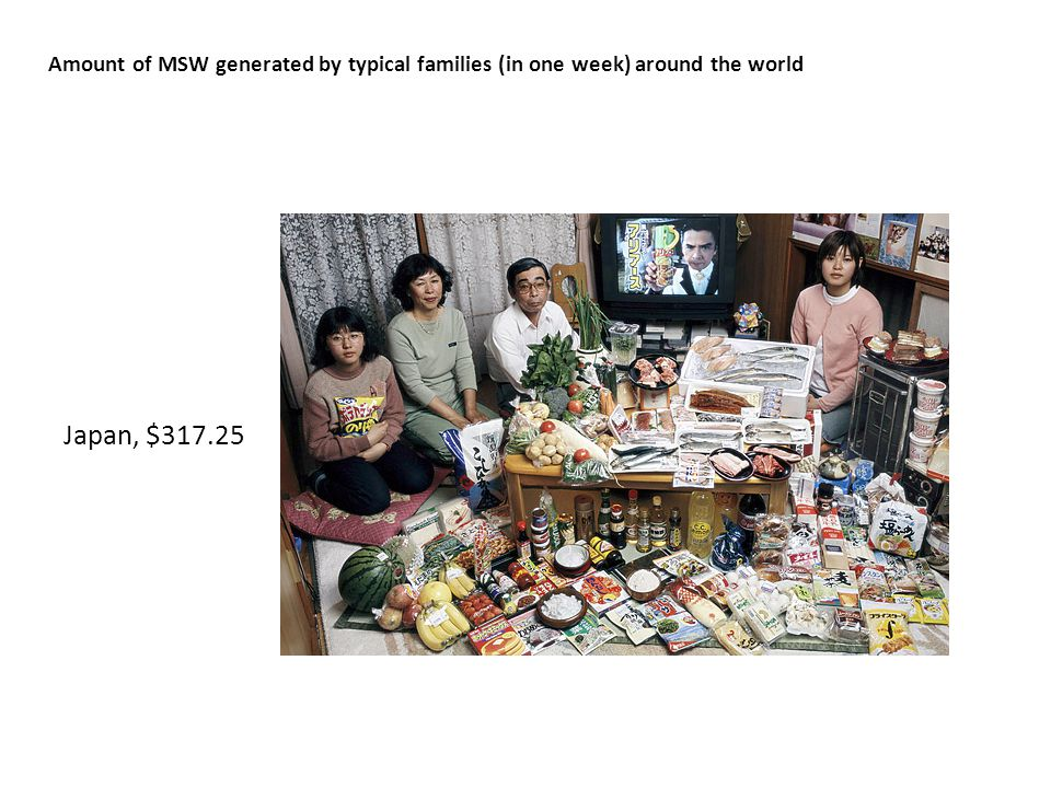 Amount of MSW generated by typical families (in one week) around the world Japan, $317.25