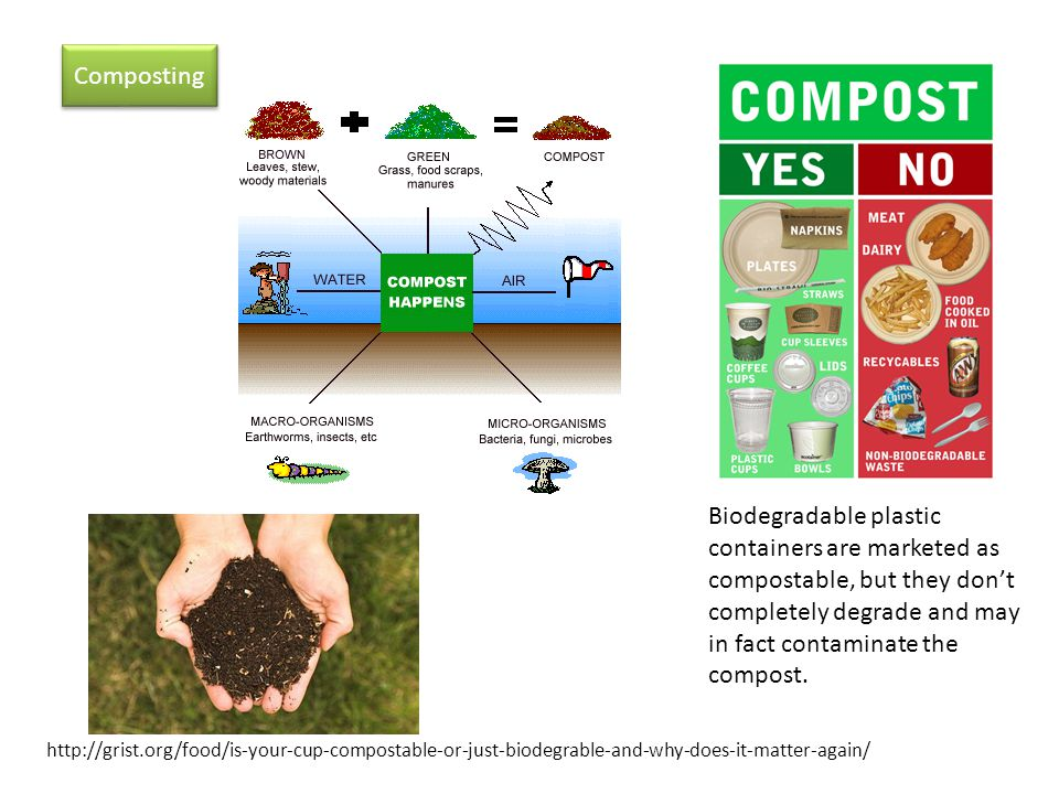 Composting Biodegradable plastic containers are marketed as compostable, but they dont completely degrade and may in fact contaminate the compost.