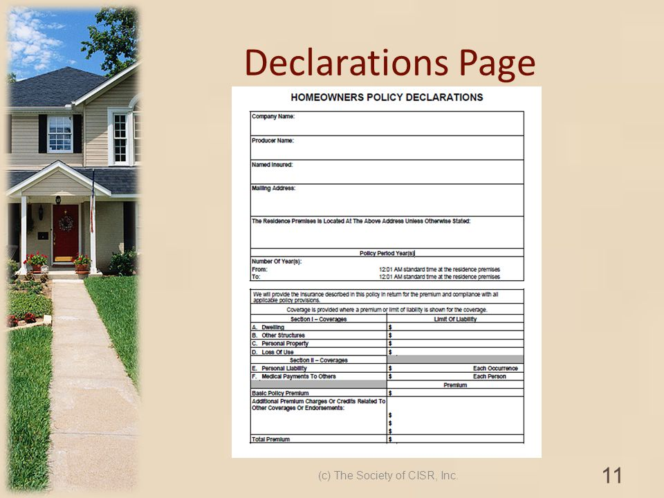 Declarations Page (c) The Society of CISR, Inc. 11