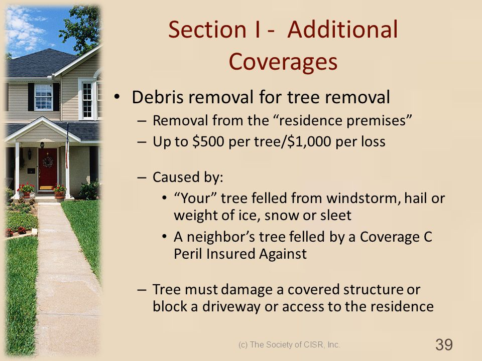 Section I - Additional Coverages Debris removal for tree removal – Removal from the residence premises – Up to $500 per tree/$1,000 per loss – Caused