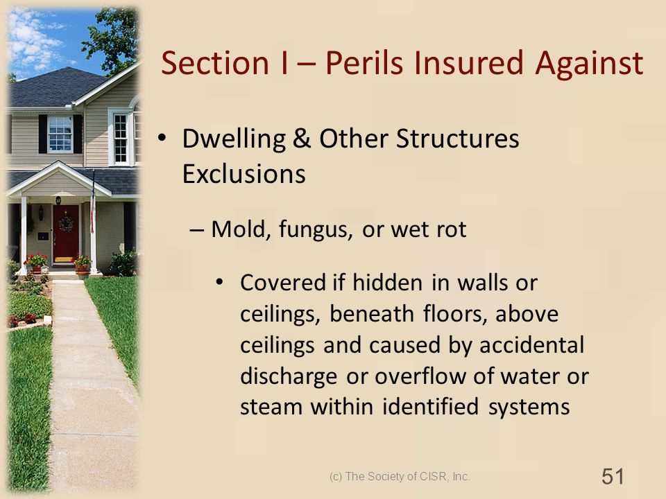 Section I – Perils Insured Against Dwelling & Other Structures Exclusions – Mold, fungus, or wet rot Covered if hidden in walls or ceilings, beneath f