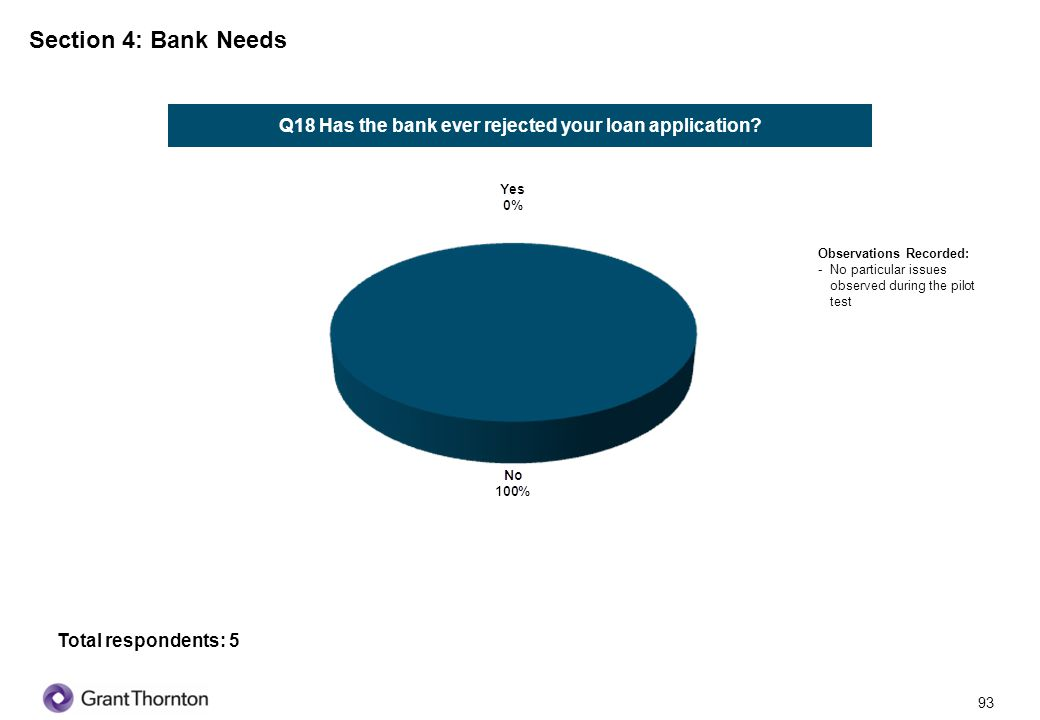 94 Section 4: Bank Needs Q19 What loan products have you used in the past for your business.