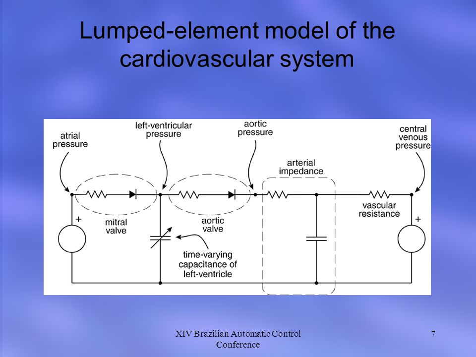 7 Lumped-element model of the cardiovascular system