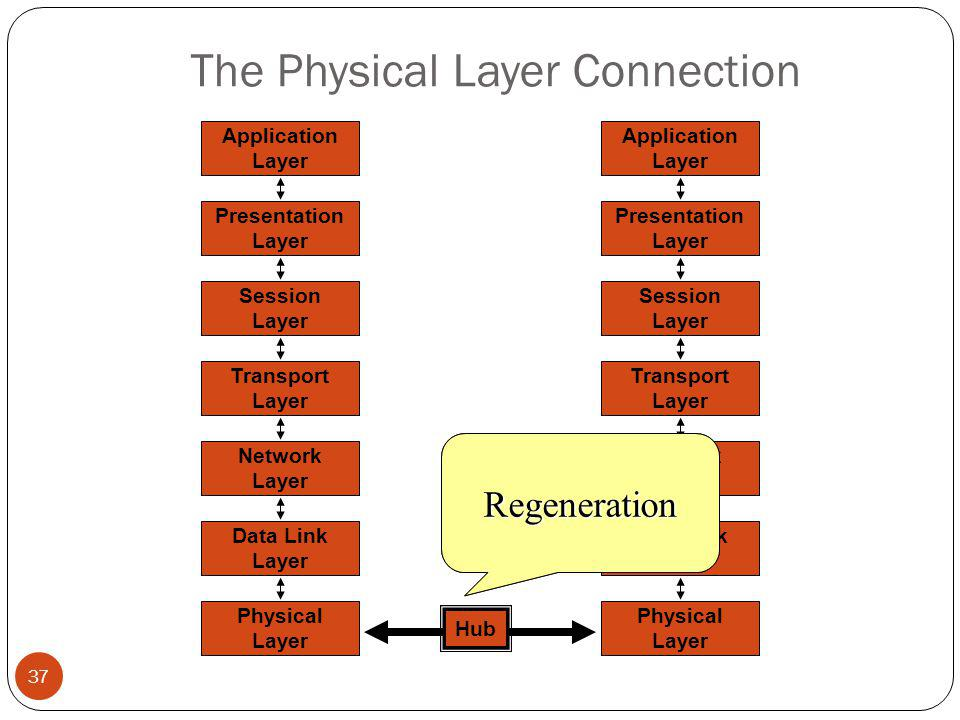 The Physical Layer Connection 37 Network Layer Data Link Layer Physical Layer Application Layer Presentation Layer Session Layer Transport Layer Network Layer Data Link Layer Physical Layer Application Layer Presentation Layer Session Layer Transport Layer Hub AmplificationRegeneration