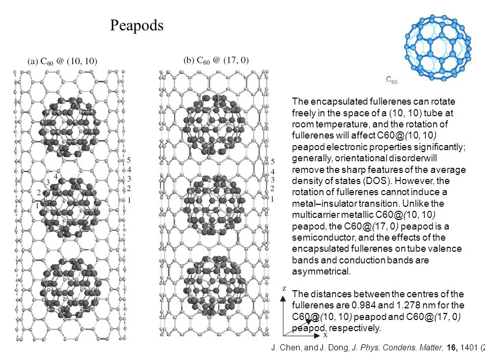 The encapsulated fullerenes can rotate freely in the space of a (10, 10) tube at room temperature, and the rotation of fullerenes will affect C60@(10,