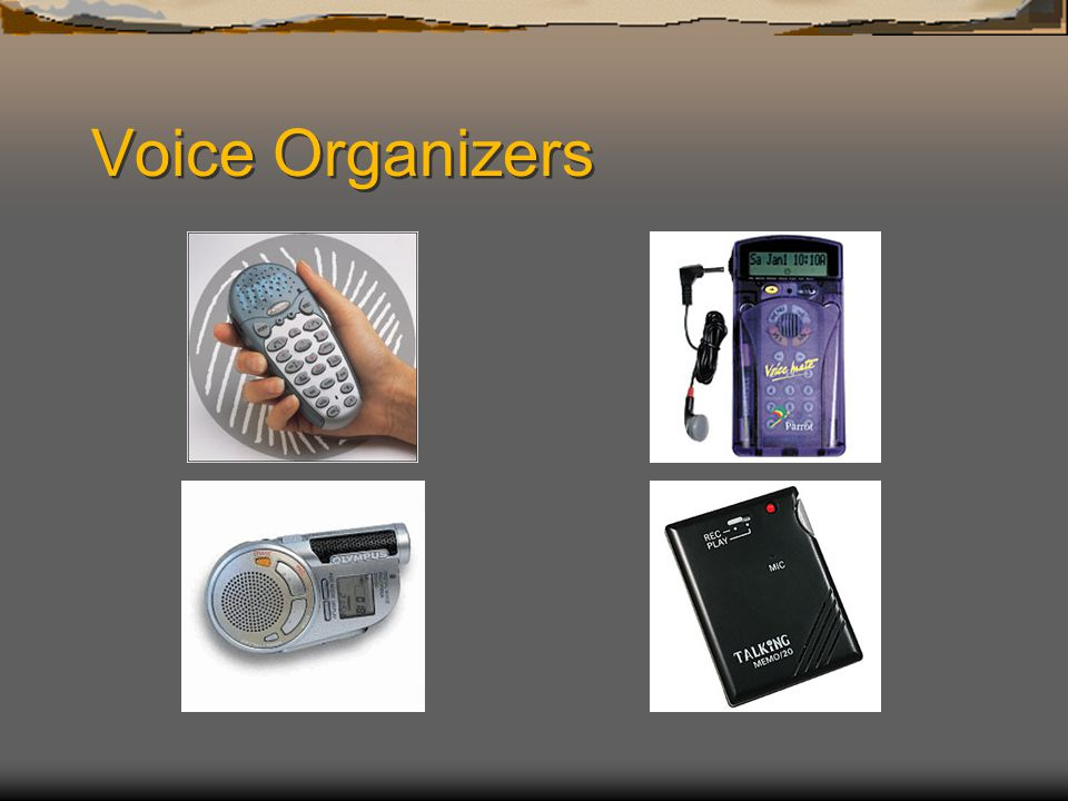 Voice Organizers