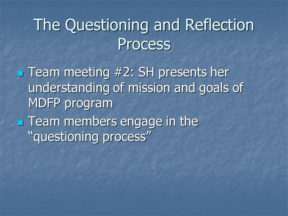 The Questioning and Reflection Process Team meeting #2: SH presents her understanding of mission and goals of MDFP program Team meeting #2: SH present