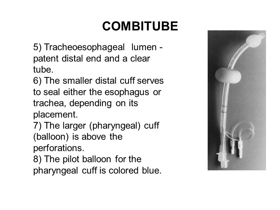COMBITUBE 5) Tracheoesophageal lumen - patent distal end and a clear tube. 6) The smaller distal cuff serves to seal either the esophagus or trachea,